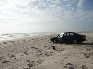 Hyundai Elantra beach