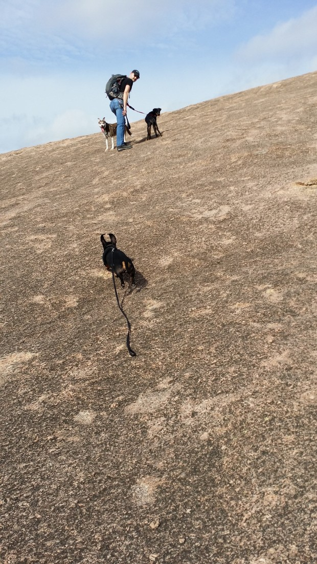 Thom and the dogs going up Enchanted Rock.