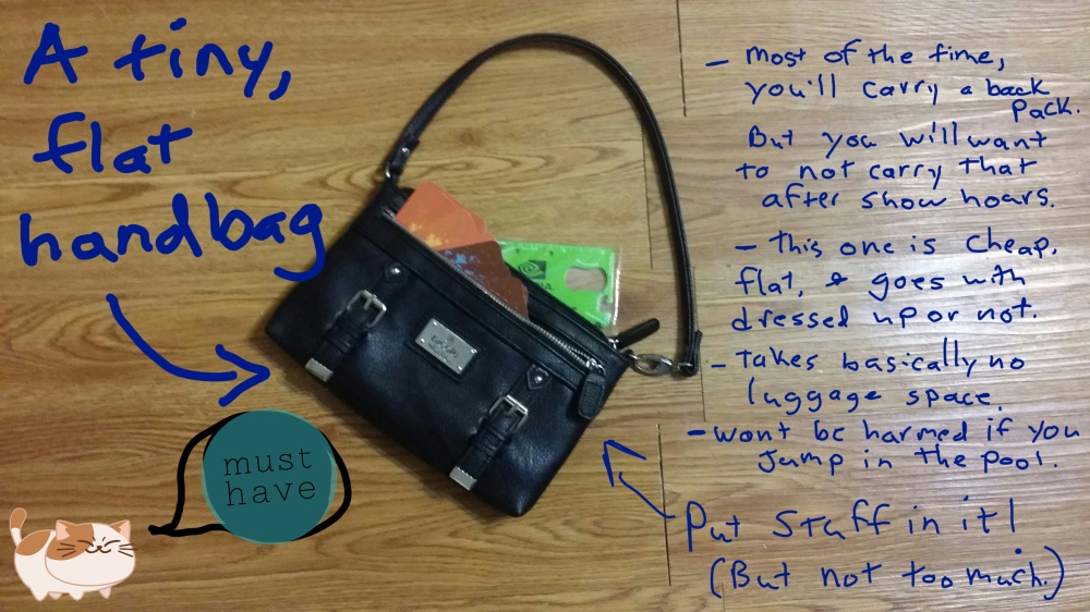 a small handbag
